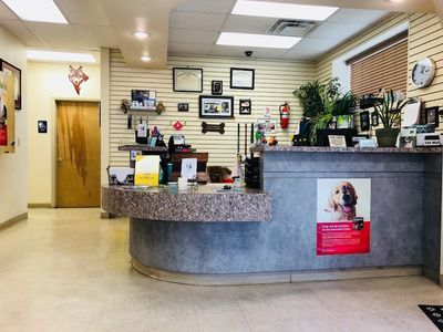Veterinarian in El Paso, TX - New Clients